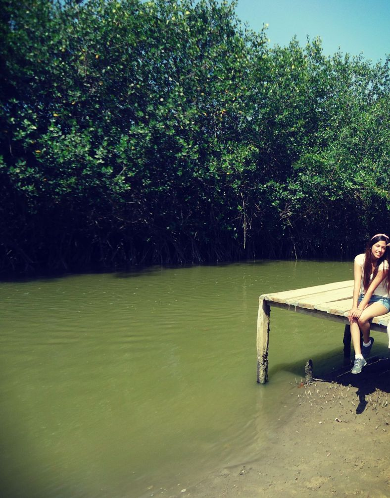 los manglares de tumbes