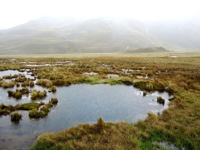 agua de Pumashimi