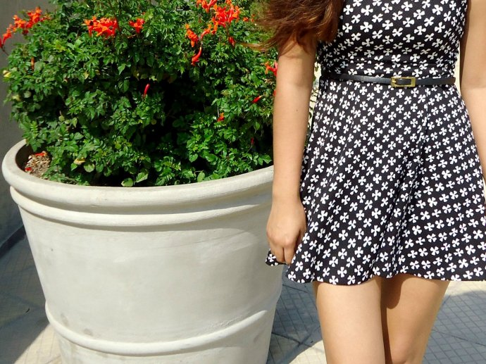 falda de ajedrez